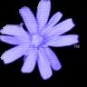 C64 Forever logo