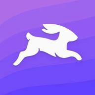 Directus logo