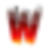 welookups logo