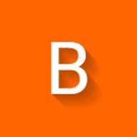 Bindwise logo
