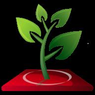 HQ Branches logo