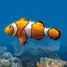 Marine Aquarium logo