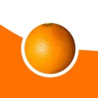 OrangeWebsite logo