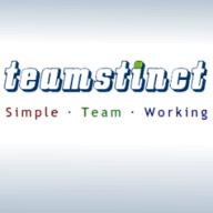 teamstinct.com logo