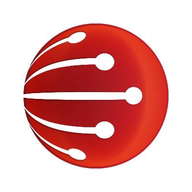Wellman NextGen logo
