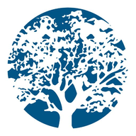 Raintree Practice Manager logo