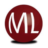 MegaLeads logo